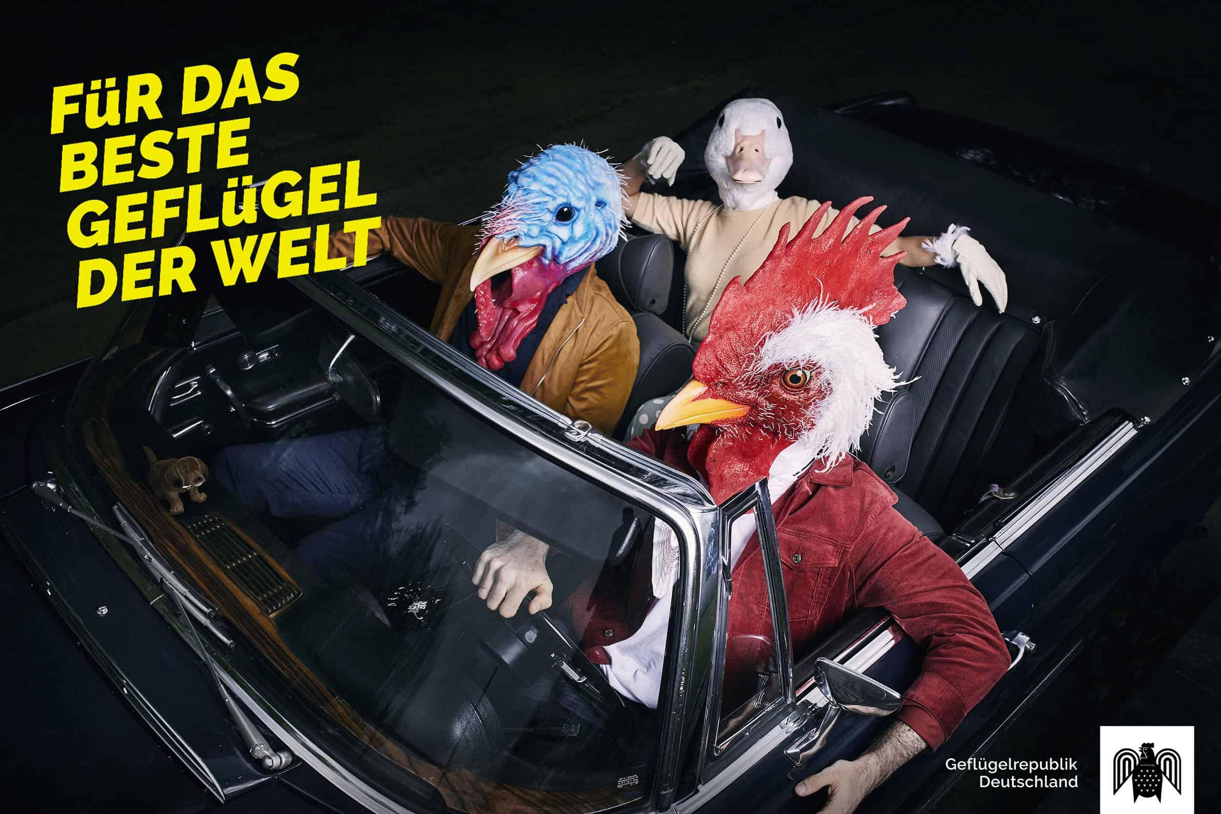 studio-ignatov-ideg-kampagne-layout-08